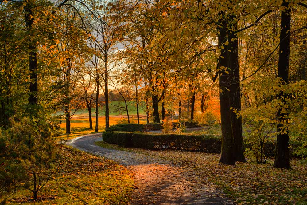Autumn colors in Ås. Photo: John Einar Sandvand