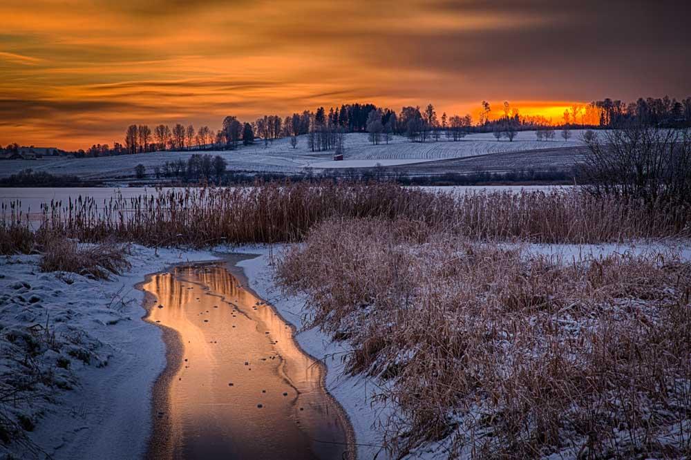 Vinterkveld ved Østensjøvannet. Foto: John Einar Sandvand