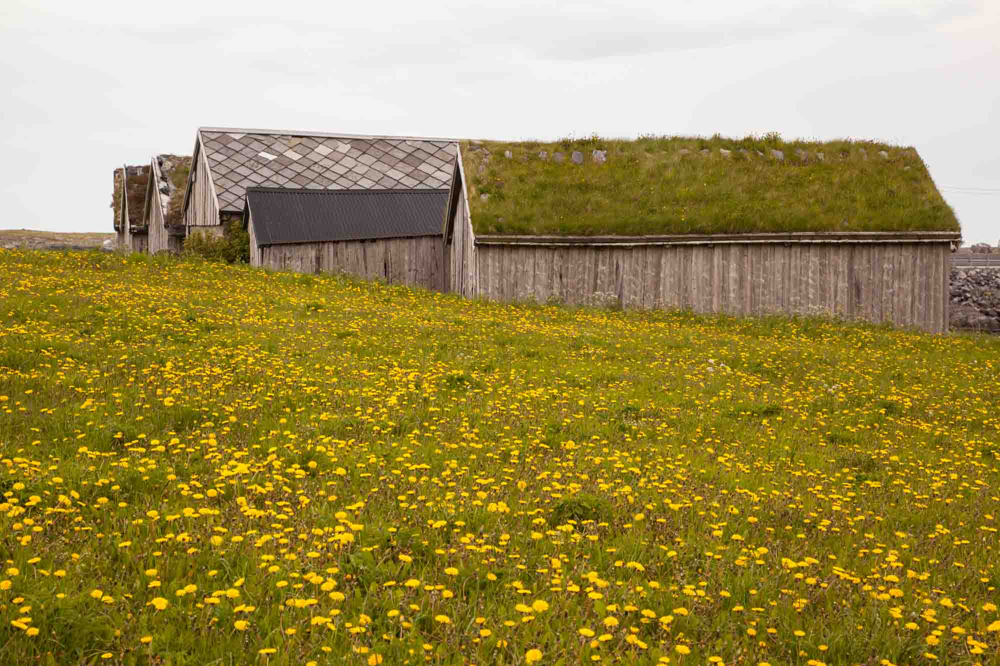 Old buildings in Haramsøy. Photo: John Einar Sandvand